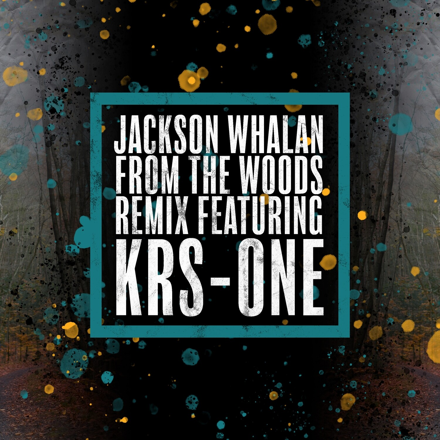 From the Woods (feat. KRS-One) [Remix] Song Download