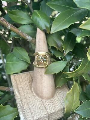Gold Open Shank Ring  - Golden Shadow