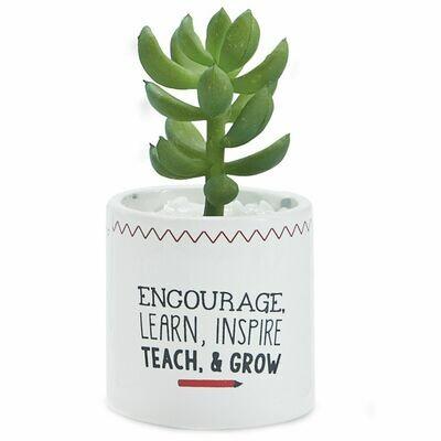 Teacher Succulent
