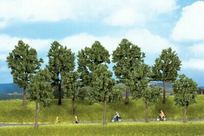 Summer Trees pkg(10) -- 4 to 5-1/2