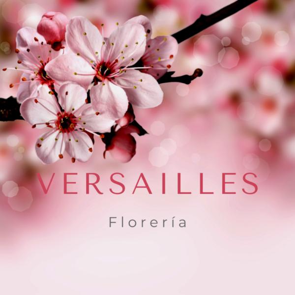Versailles Florería