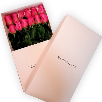 Rosas x 12 Caja - Fucsia