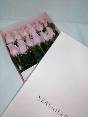 Caja 12 Rosas Rosadas