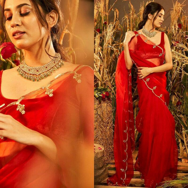 Designer Red  Sequin Work Organza Saree