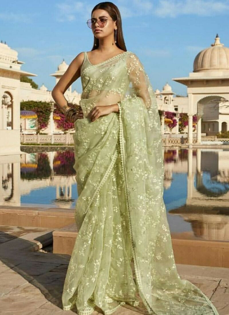Light Green Naylon Mono Net Fancy Thread Work Saree