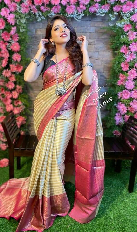 Multi Color Designer Saree