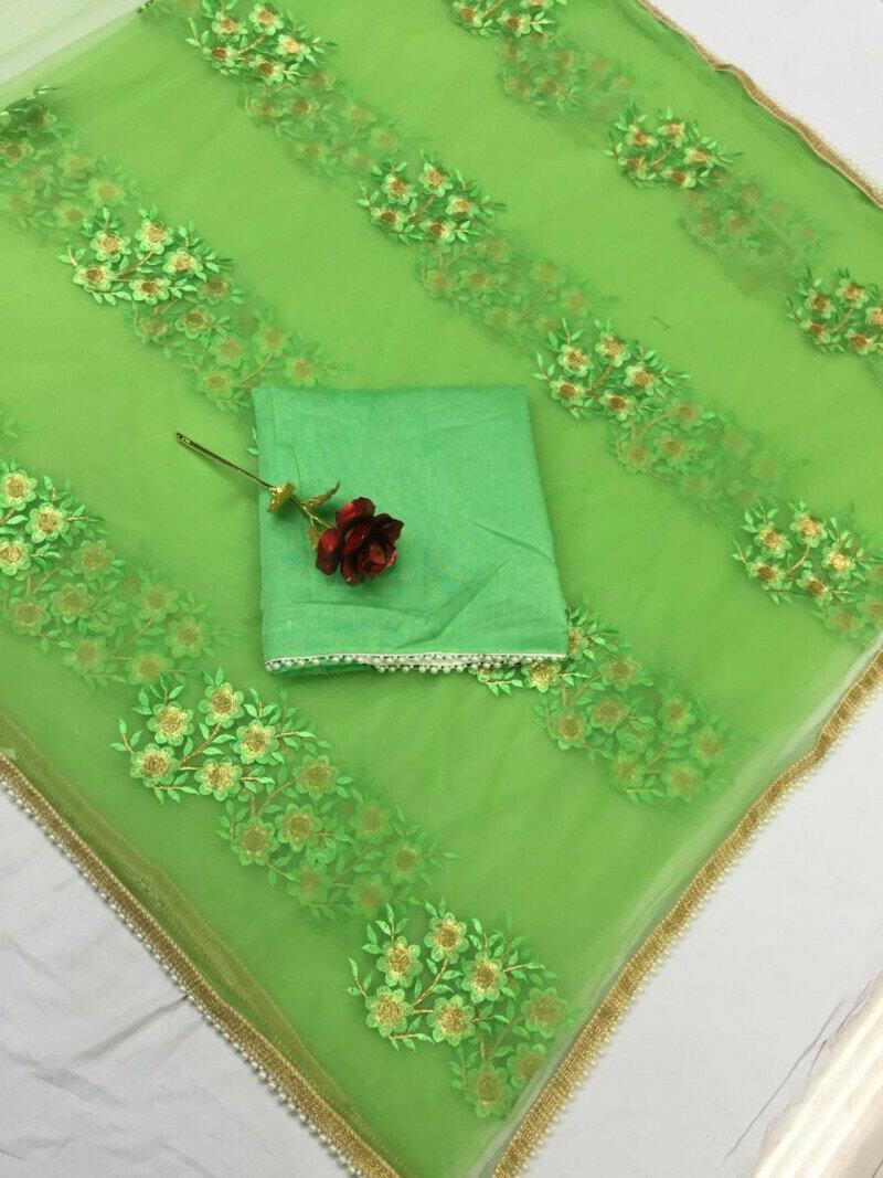 women Heavy Mono net with Embroidery & Pari Lace Designer Saree (Green)