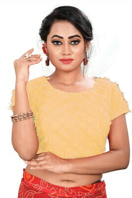 Latest Yellow Color Party Wear Banglori Blouse