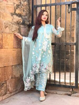 Designer Net Embroidered Pakistani Suit