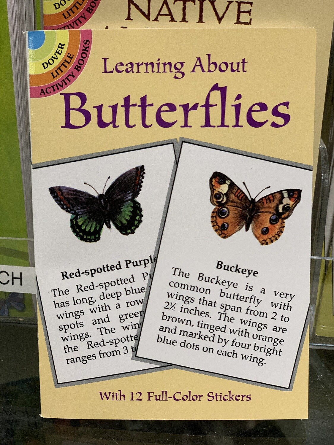 Children's Books Learning about Butterflies