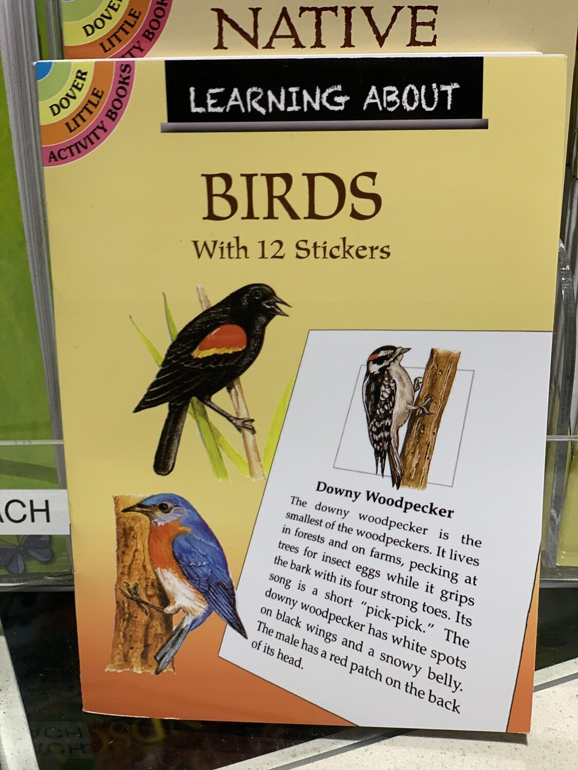 Children's Books - Learning About Birds