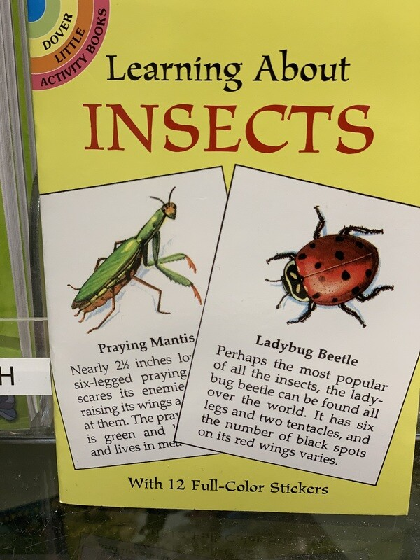 Children's Books Learning about Insects