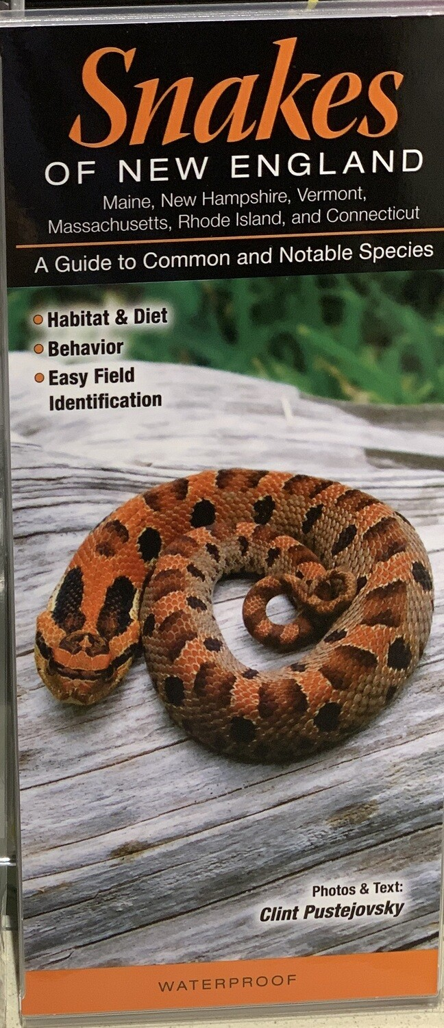 Field Guides Snakes