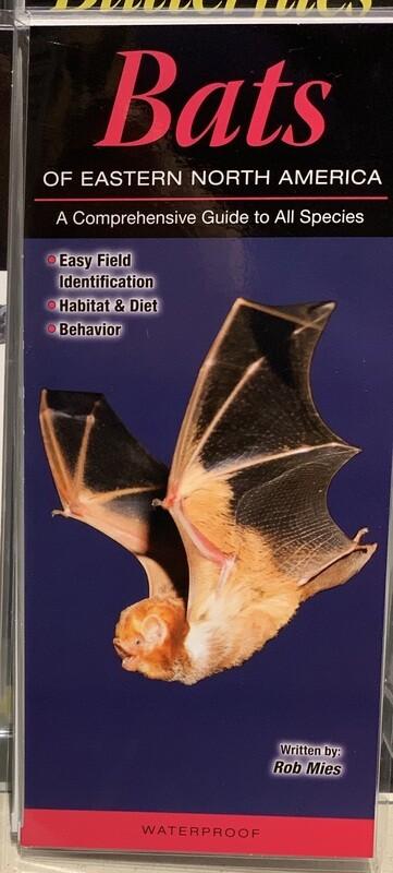 Field Guides Bats