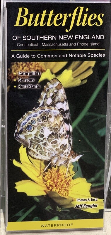 Field Guides Butterflies