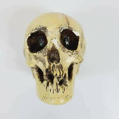 Randotti / Disneyland Glow in Dark Skull