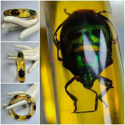 1960s Honey Amber Lucite Beetle Bracelet