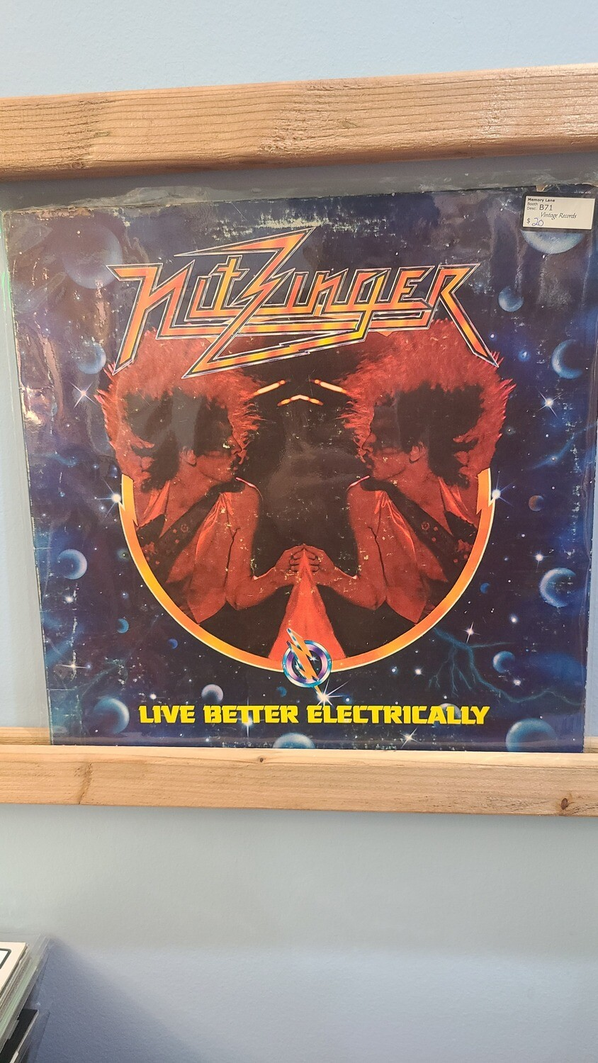 Nitzinger - Live Better Electrically