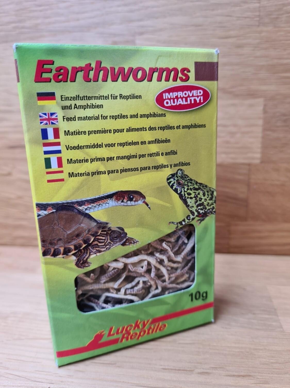 Regenwürmer gefriergetrocknet