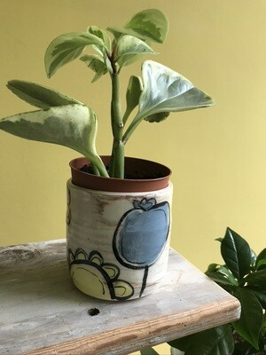 'Peeping Yellow' Plant Pot