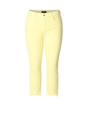 A000865 Lemonade Yellow
