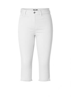 A001038 White