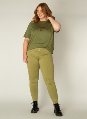 A002362 Olive Green