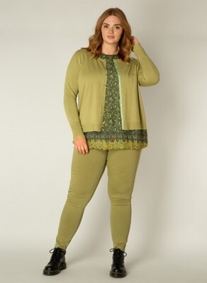 A002069 Olive Green