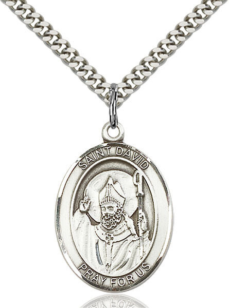 """Sterling Silver St. David of Wales Pendant on a 24"""" Light Rhodium Heavy Curb Endless Chain"""