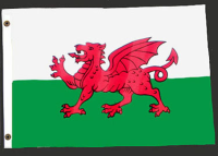 3ft. x 5ft. Welsh Flag
