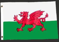 3ft. x 5ft. Welsh Flag