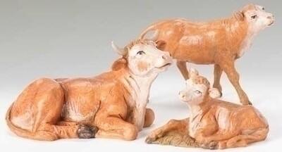 "5"" Fontanini Ox Family"