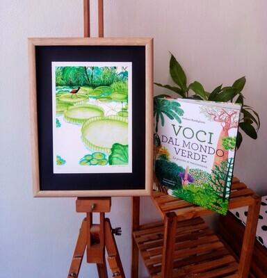 Pacchetto Voci dal mondo verde + stampa ninfee