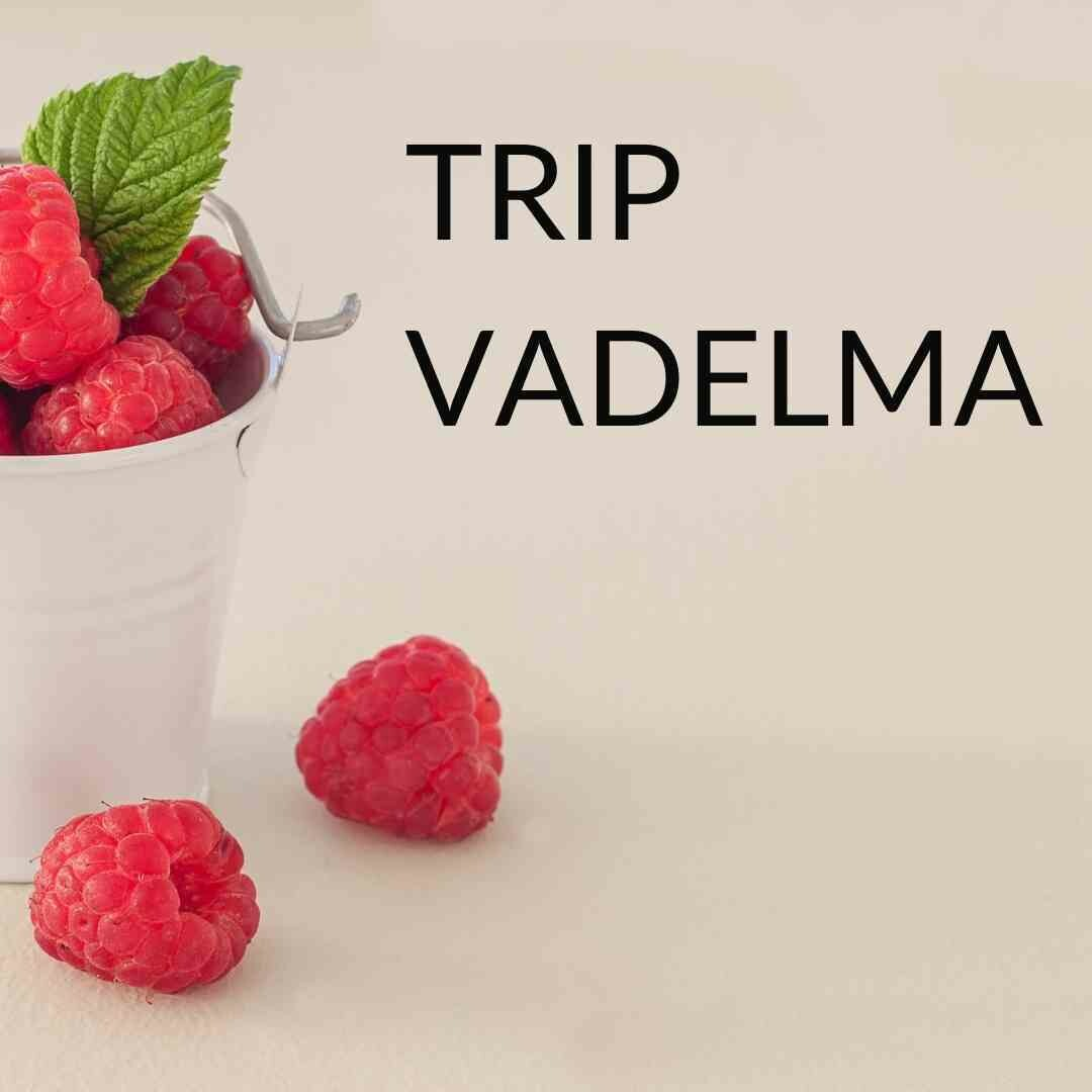 Trip mehu, Vadelma