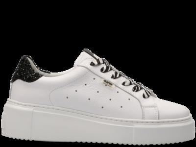 66.1528.02 White - Glitter Black