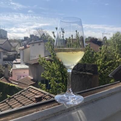 6 Verres de dégustation en cristal «Favorit» 26cl (Verrerie de Bourgogne)