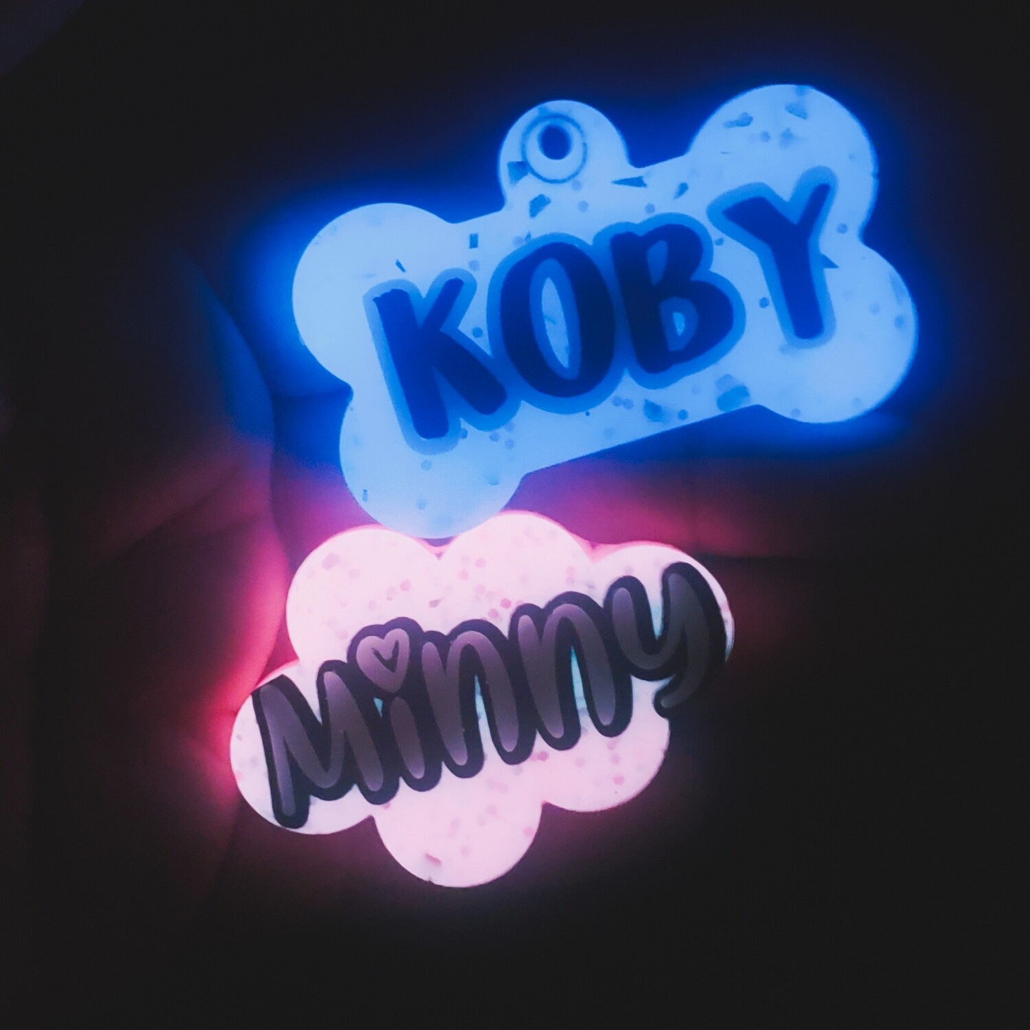 Glow In The Dark Pet ID Tag