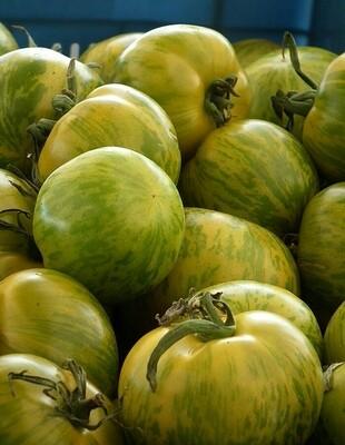 Tomates Green zébra