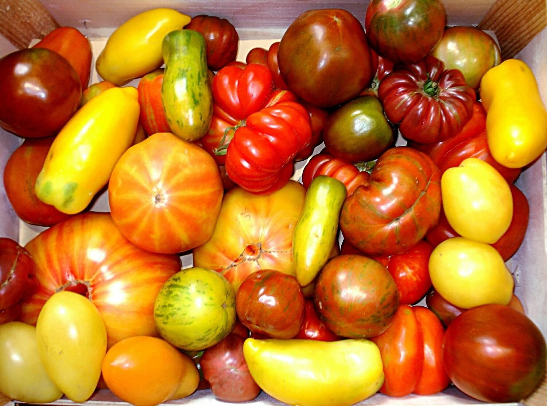 Tomates mix colors saveurs d antan promo au kg