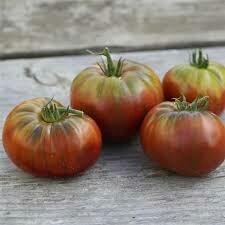 Tomates noire de Crimée (pleine terre)