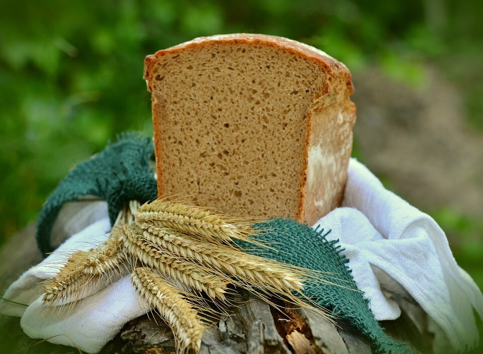 Wisdom of the Corn Mother Retreat