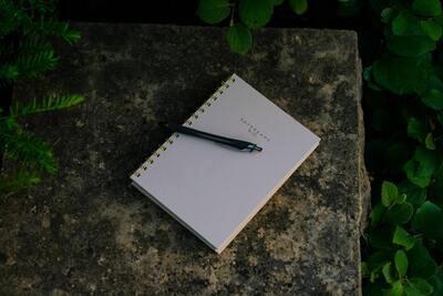 The Cavewoman Way Fall Writing Series