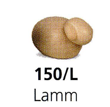 Bjoern Koehler - Lamb  - Large - For large Nativity Scene