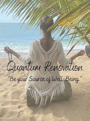 Immersion Trip: Quantum Renovation (3 days)