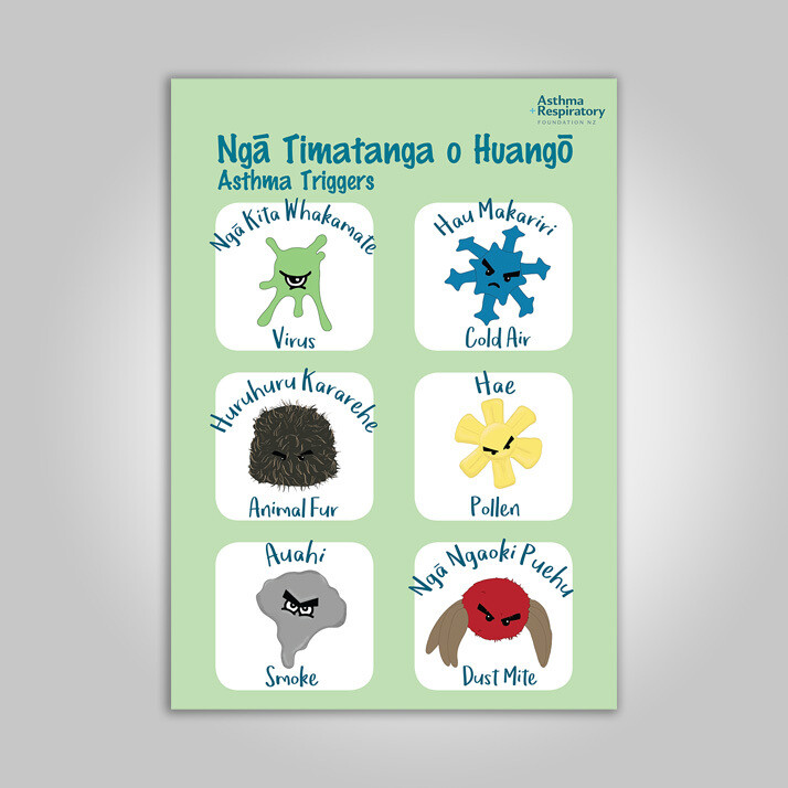 Asthma Triggers Poster (Te Reo English) A3 Poster - 1 Unit