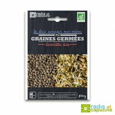 Graines à germer Lentilles bio