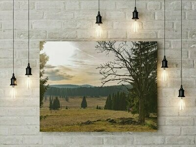 Krušné hory - podzim,  foto obraz -  230 motivů, 50 x 30 cm - Stadur deska 5 mm