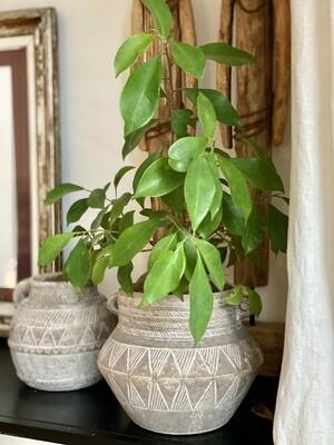 CAMILLE Pot de fleur  3 Beige/noir