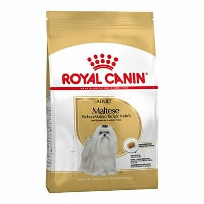 Royal Canin bichon maltese 1.5kg