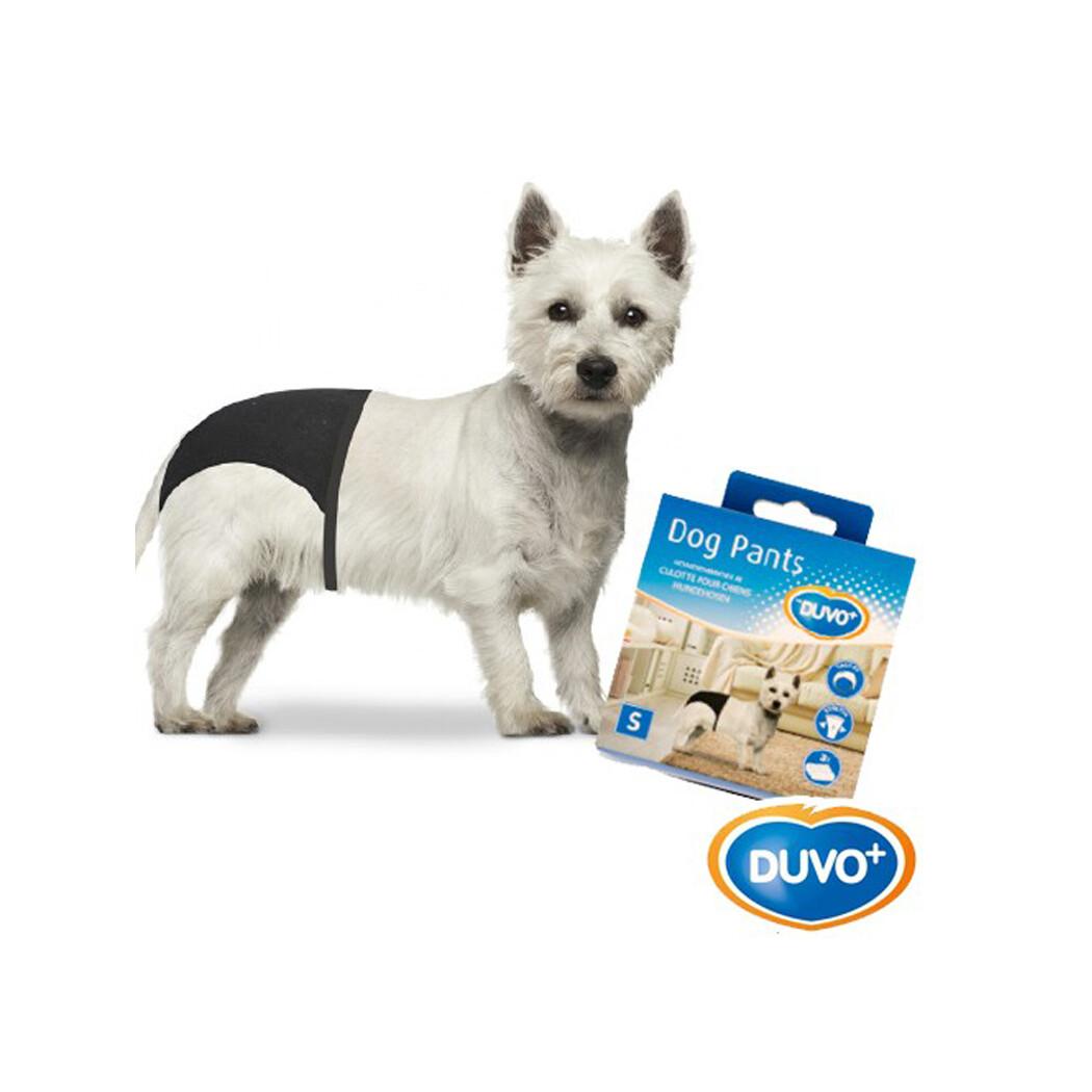 Duvo dog pants small 60-24-31cm
